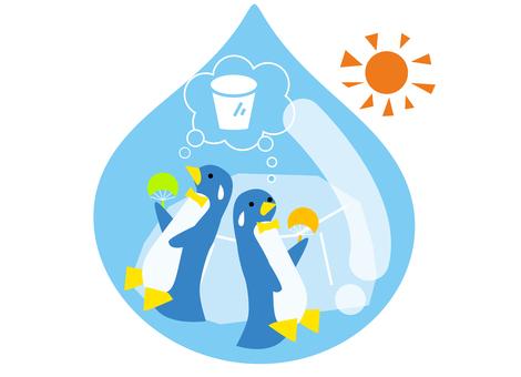 Hot penguins
