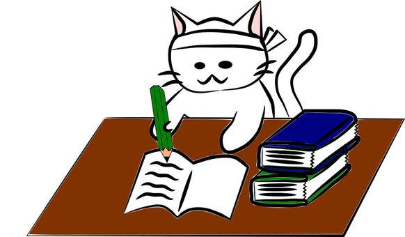 Nyanko while studying