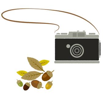 레트로 분위기의 카메라와 도토리