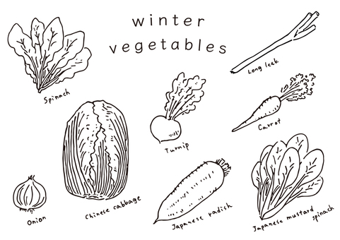 【Vegetables】 Winter vegetables summary drawing