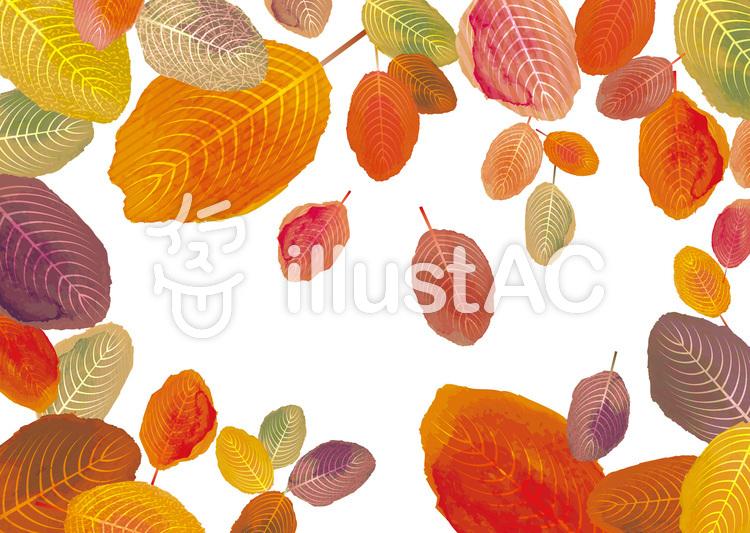 秋冬紅葉水彩落葉植物10月11月和風飾りイラスト No 無料イラストなら イラストac
