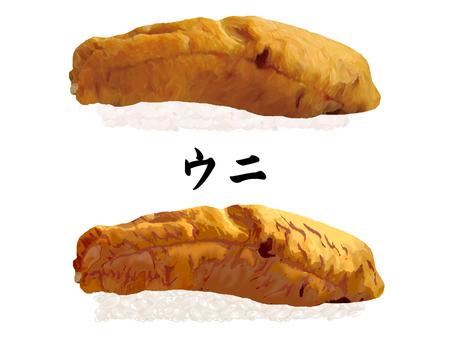 握壽司海膽