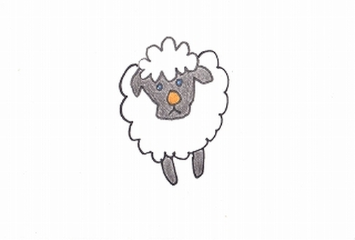 Sheep and the black