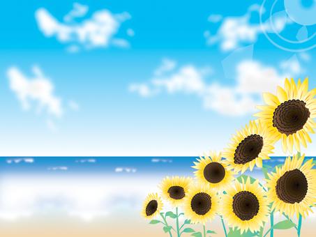 Sea _ Sunflower 2