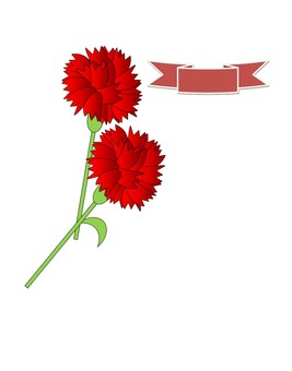 Carnation · Mother's Day