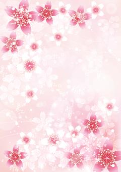 桜きらきら