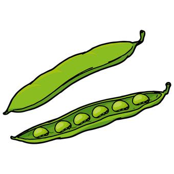 Sayin / String bean