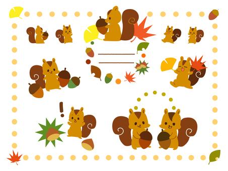Various squirrels