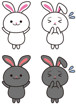 White rabbit black rabbit