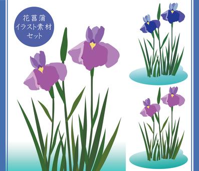 Illustration material set for iris grapes