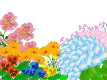 春 初夏の花