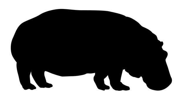 Silhouette - Hippo 01