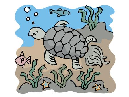 手寫的風 - 海龜在海裡