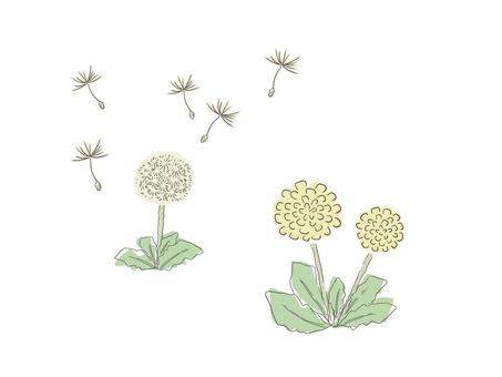 Dandelion set