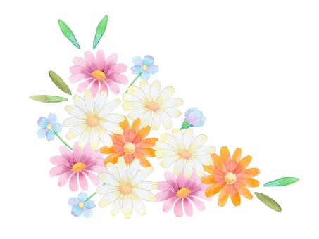 Bouquet ★ 0077