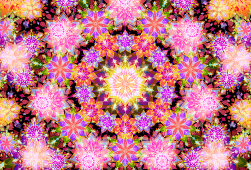 A kaleidoscope of spring flowers 2