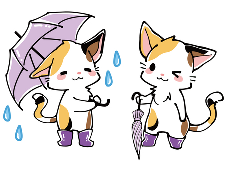 Rainy season Muri cat with umbrella