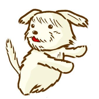 Mum fluffy dog