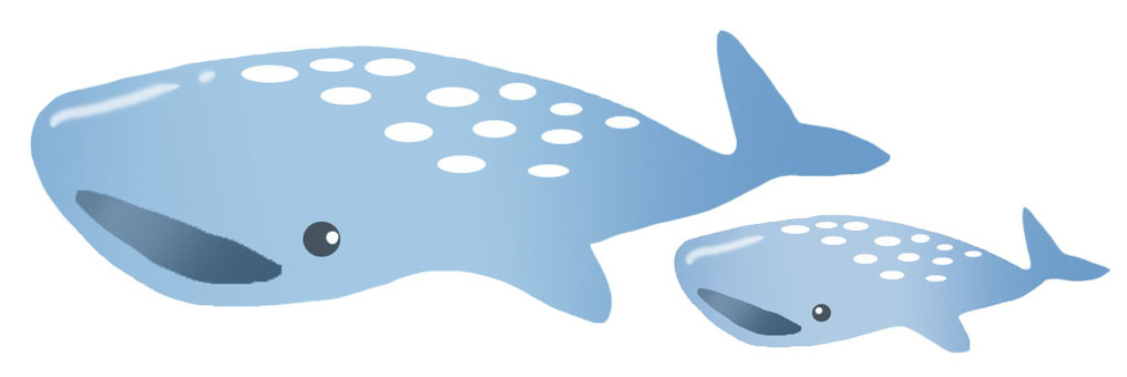 Parent and child of the whale shark