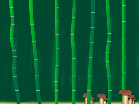 Bamboo difference