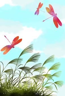 秋天天空Tonbo和Kawahara Susukino賀卡