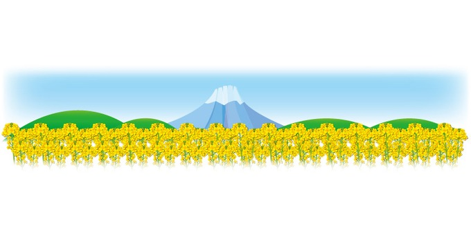 Rape blossoms and Mt. Fuji-like horizontally long frame