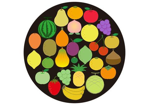 fruit_28 kinds of fruits 2