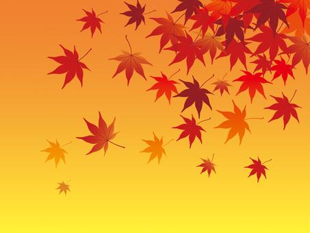 Autumn leaves image illustration