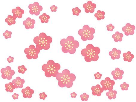 매화의 꽃이 흩