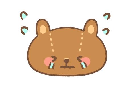 Cry bear
