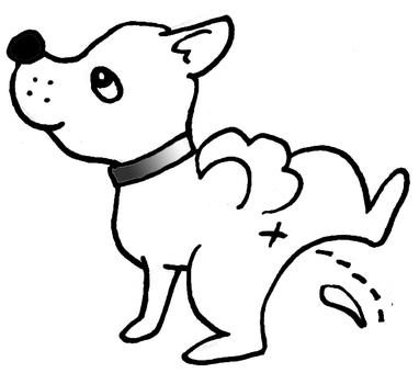 Dog's piss