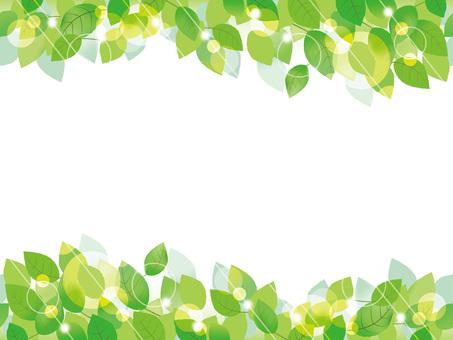 Fresh green background 1