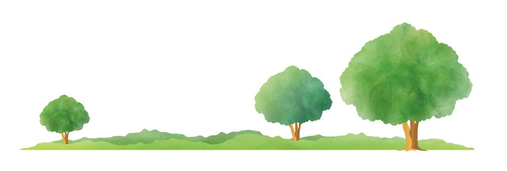 樹木水彩風