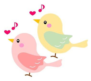 Bird s chirp