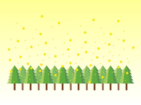 Cedar pollen forest
