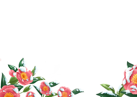 Mountain tea flower