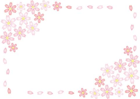 Sakura Ⅲ