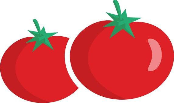 Tomato mini tomato