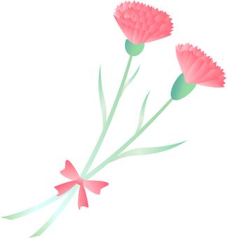 康乃馨粉紅色