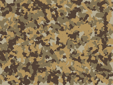 Camouflage type07