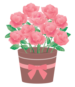 Rose_potted 01 pink 2