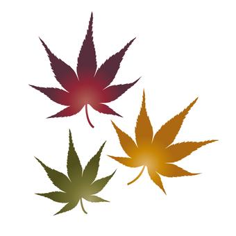 Illustration of autumn leaves