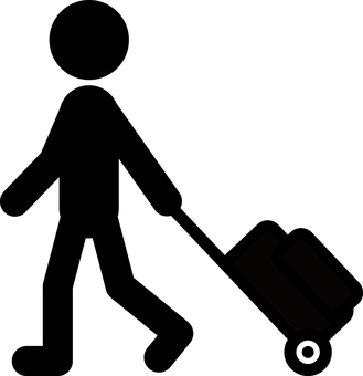 Carry bag trip carry case