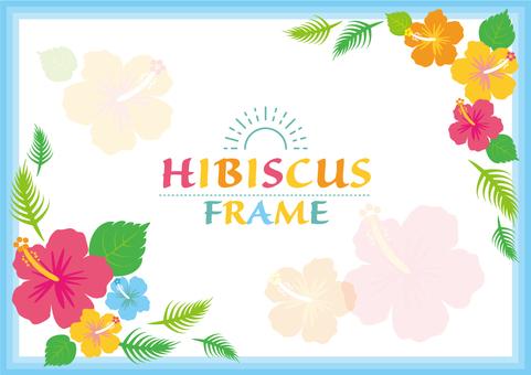 Hibiscus frame