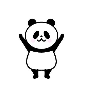 팬더 양손을 올린다