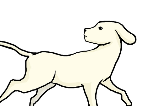 Dog turning around 01