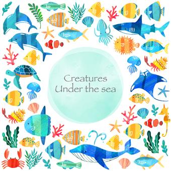 海の生き物フレーム