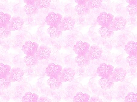 장미의 모양