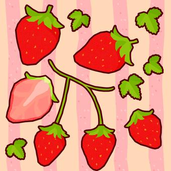 봄의 휘어있는 딸기 5