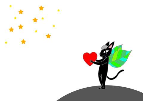 Starry sky and black cat